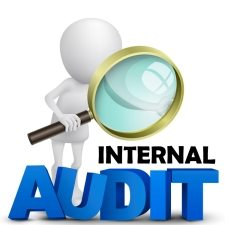 internal audit career path