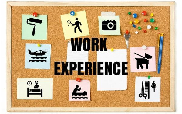 Examples of Work Experience 1